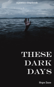 Book Cover: These Dark Days